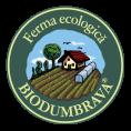 BIODUMBRAVA-logo