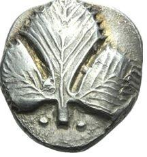 Moneda_patrunjel